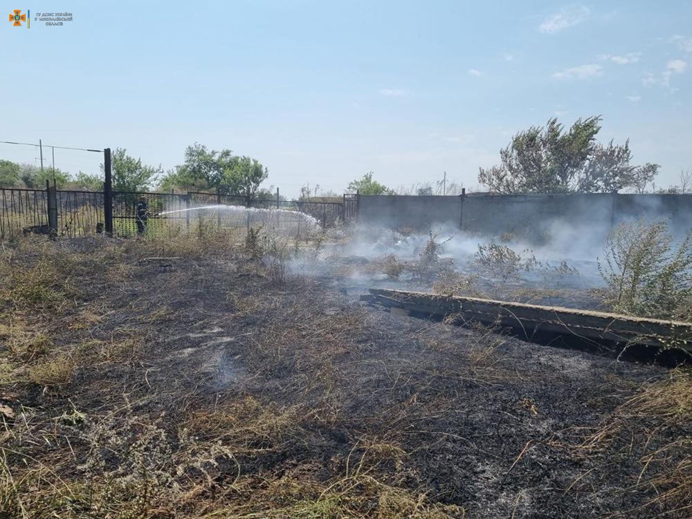 На Николаевщине за сутки выгорело более 49 га открытых территорий (ФОТО) 3