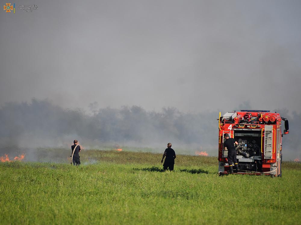 За сутки на территории Николаевской области выгорело 50 га открытых территорий (ФОТО) 3