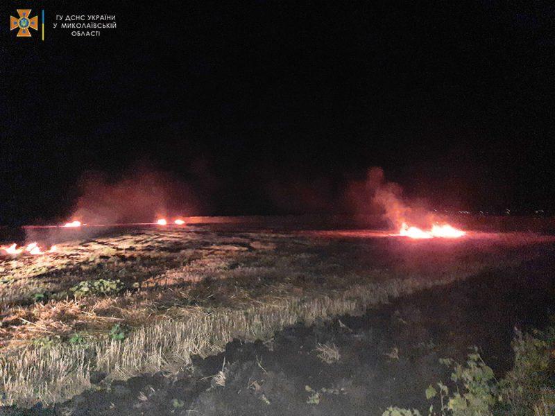 На Николаевщине за сутки выгорело более 48 га открытых территорий — пострадал один человек (ФОТО)