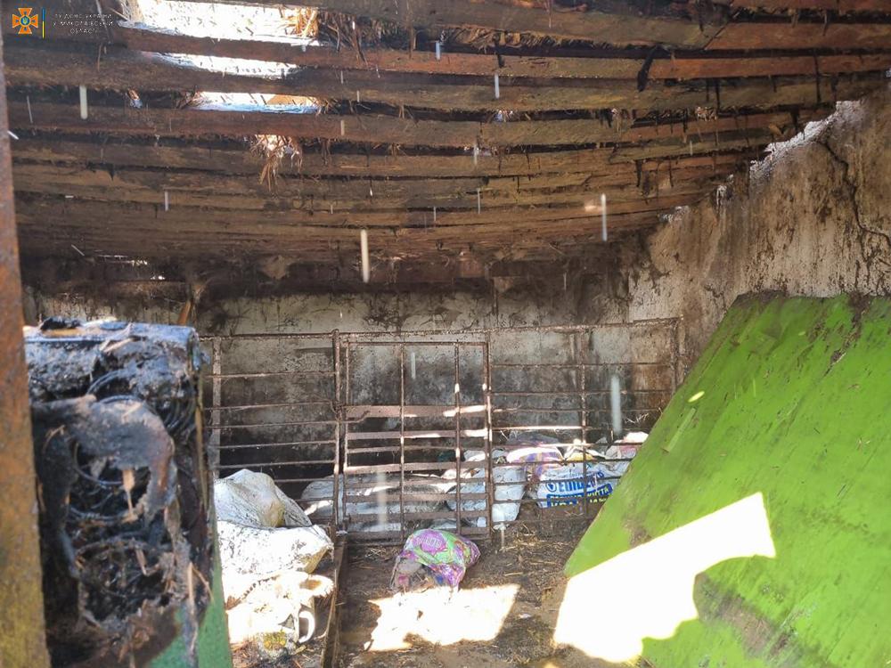 Спасатели Николаевщины четырежды за сутки тушили пожары в жилье (ФОТО) 7