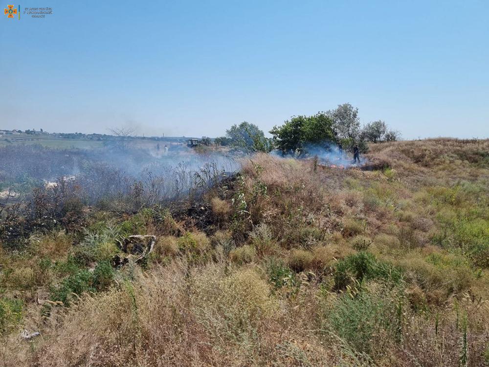 На Николаевщине за сутки выгорело более 49 га открытых территорий (ФОТО) 5