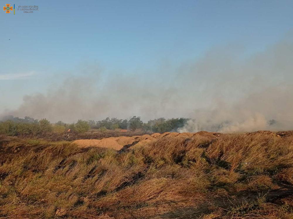 Вчера на Николаевщине тушили Балобановский лес и 2,3 га открытых территорий (ФОТО) 7