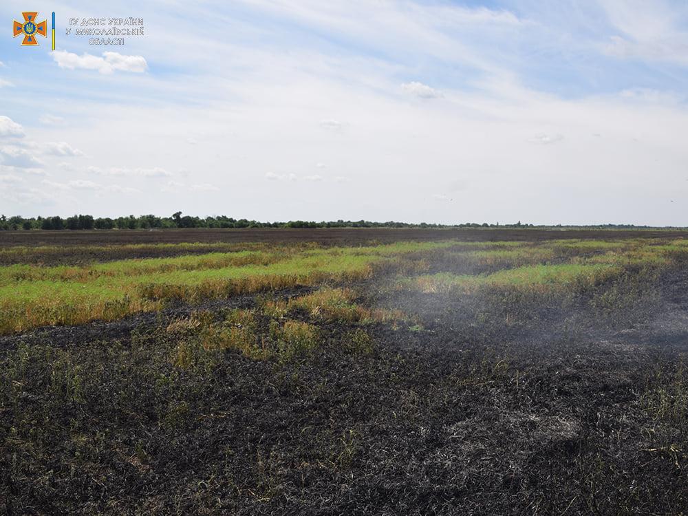 На Николаевщине за сутки выгорело более 48 га открытых территорий - пострадал один человек (ФОТО) 7