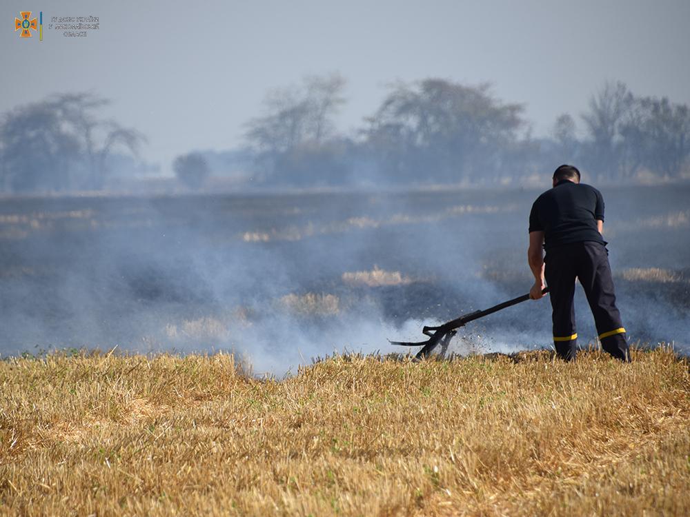 За сутки на территории Николаевской области выгорело 50 га открытых территорий (ФОТО) 7
