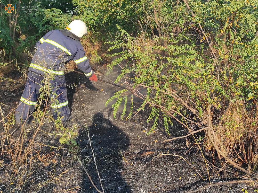 На Николаевщине за сутки 26 раз тушили пожары в экосистемах, в двух случаях огонь перекинулся на жилой сектор (ФОТО) 7