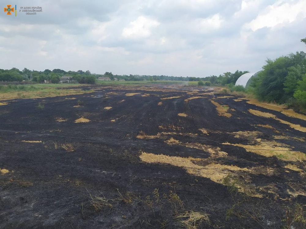 На Николаевщине за сутки выгорело более 49 га открытых территорий (ФОТО) 7