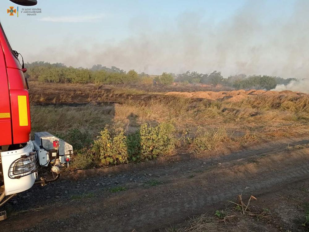 Вчера на Николаевщине тушили Балобановский лес и 2,3 га открытых территорий (ФОТО) 9