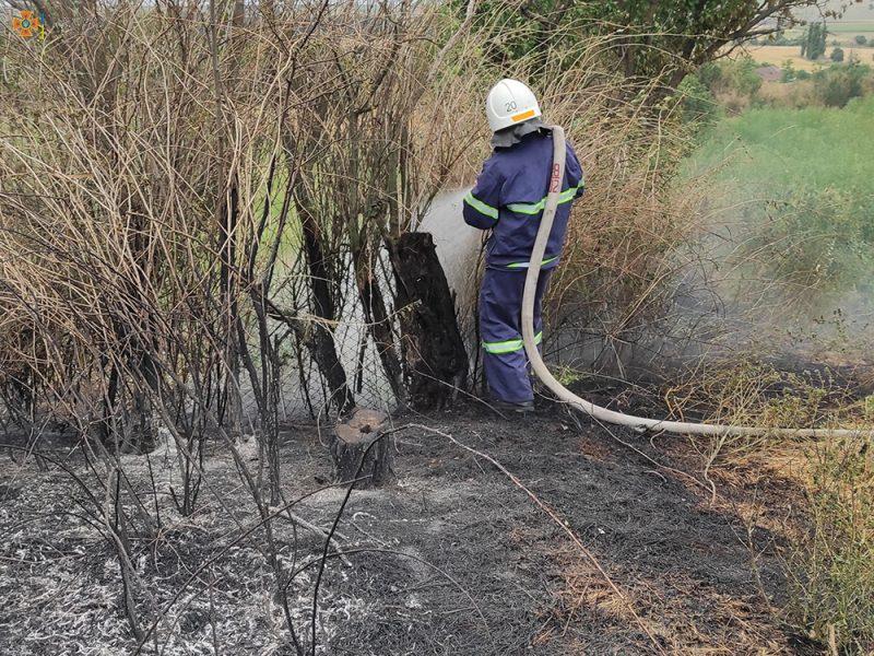 На Николаевщине за сутки выгорело более 49 га открытых территорий (ФОТО)