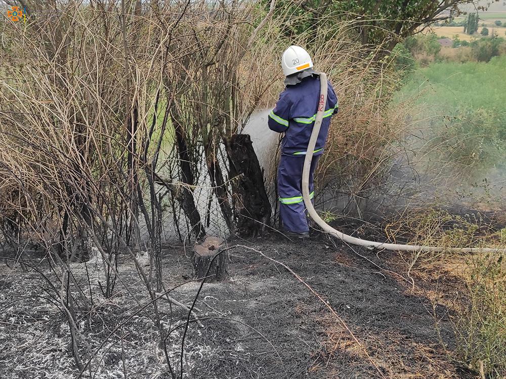 На Николаевщине за сутки выгорело более 49 га открытых территорий (ФОТО) 9