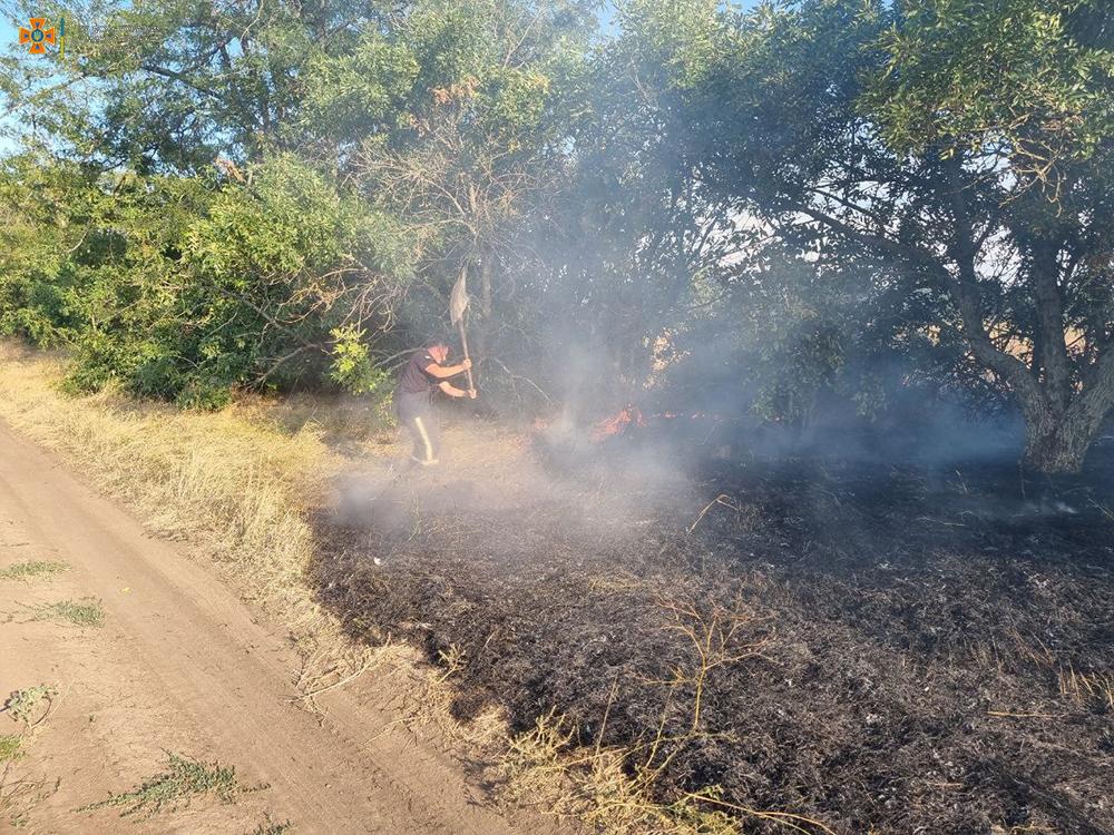 Вчера на Николаевщине тушили Балобановский лес и 2,3 га открытых территорий (ФОТО) 11