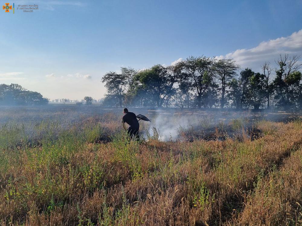 Вчера на Николаевщине тушили Балобановский лес и 2,3 га открытых территорий (ФОТО) 1