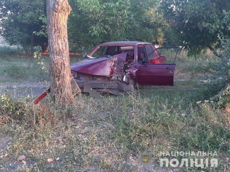 Под Николаевом Peugeot врезалось в дерево — водитель погиб (ФОТО)