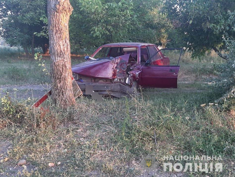Под Николаевом Peugeot врезалось в дерево - водитель погиб (ФОТО) 1