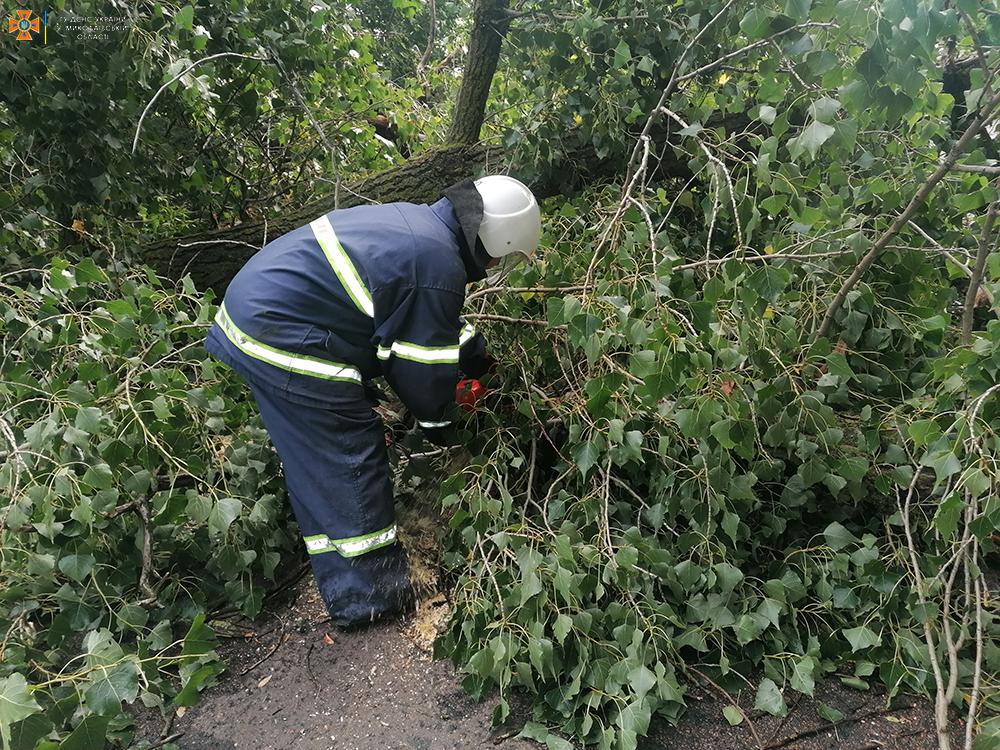 На Николаевщине непогода снова напакостила - поваленные деревья убирали спасатели (ФОТО) 3