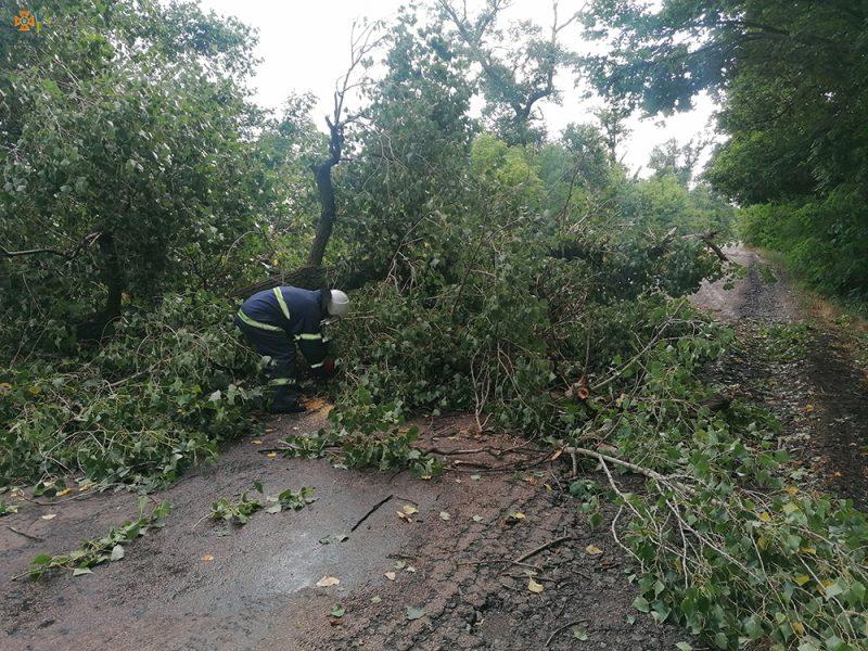 На Николаевщине непогода снова напакостила — поваленные деревья убирали спасатели (ФОТО)
