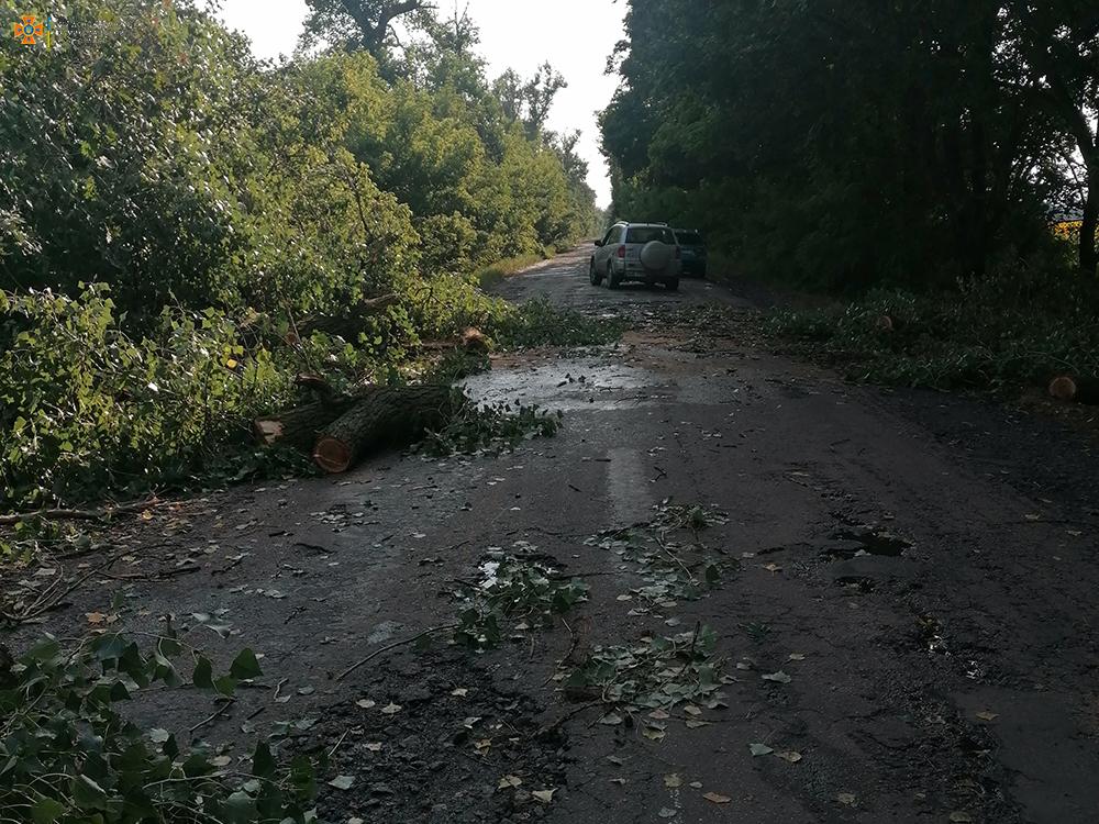 На Николаевщине непогода снова напакостила - поваленные деревья убирали спасатели (ФОТО) 7