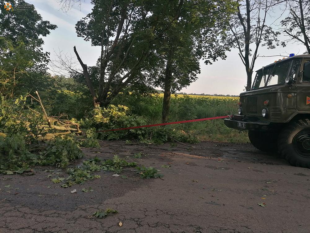 На Николаевщине непогода снова напакостила - поваленные деревья убирали спасатели (ФОТО) 1