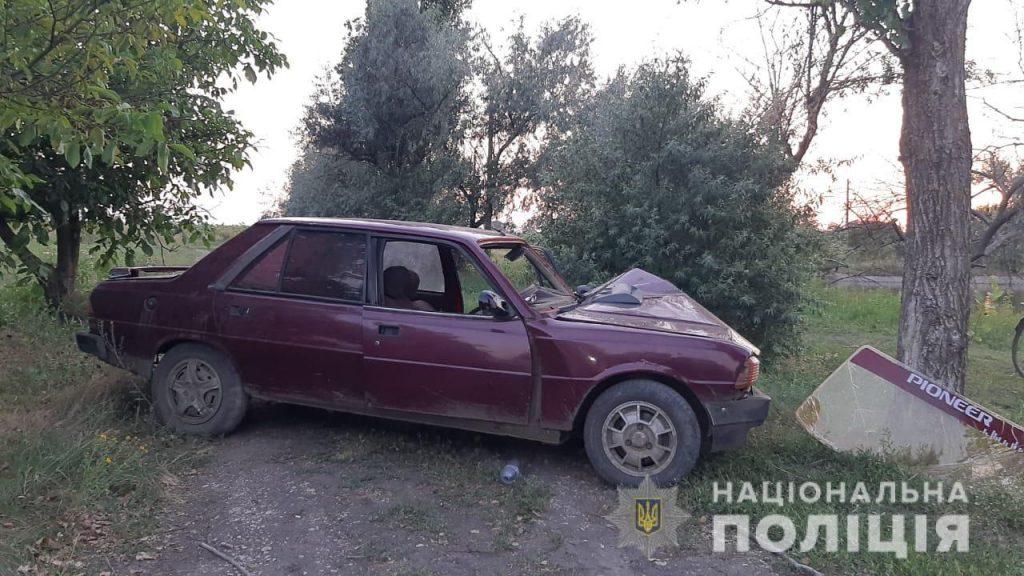 Под Николаевом Peugeot врезалось в дерево - водитель погиб (ФОТО) 3