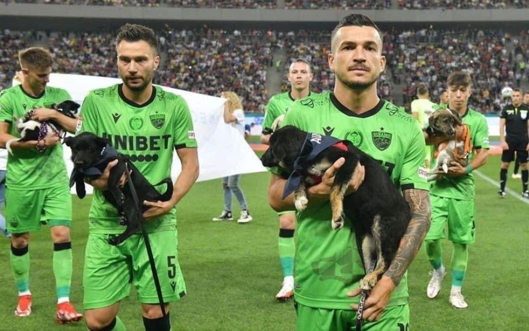 Румынские футболисты будут выходить на поле с бездомными собаками на руках 5