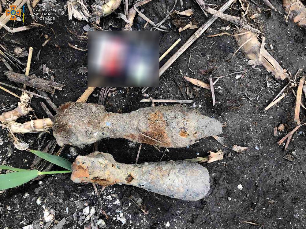 На Николаевщине обезвредили артиллерийский снаряд и две минометных мины (ФОТО) 1
