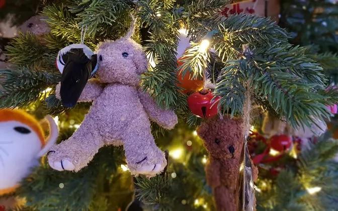 Столица Эстонии уже начала готовиться к Рождеству - ищут подходящую ель 1