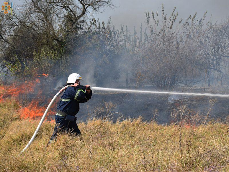 Возле Мешково-Погорелово выгорело почти 5 га (ФОТО)