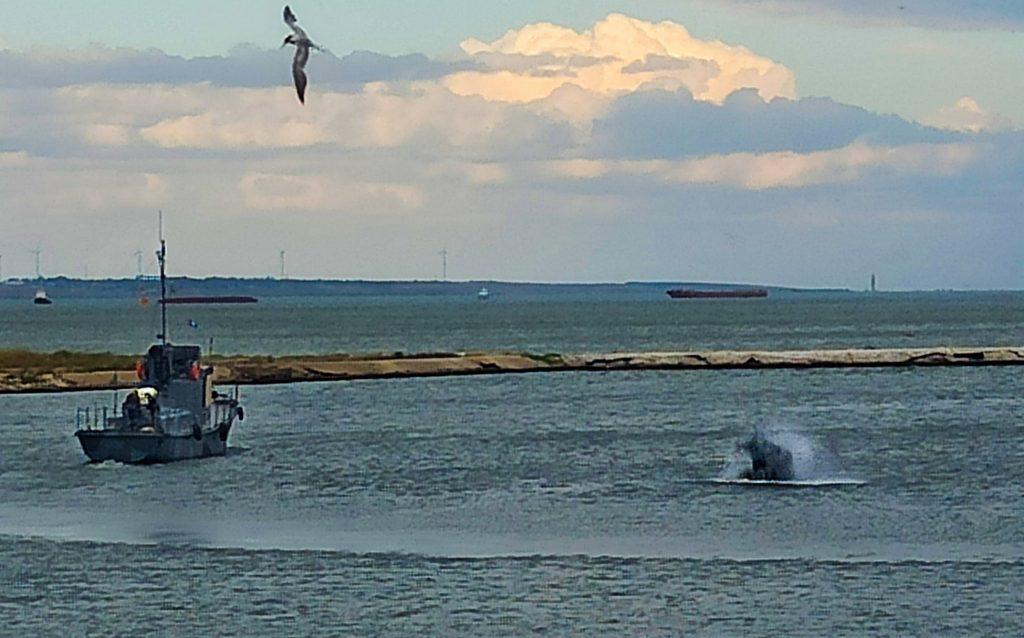 На Николаевщине прошли учения ВМС по охране пунктов базирования (ФОТО) 5