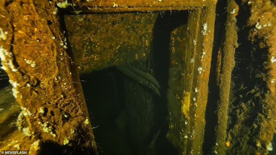 След Янтарной комнаты? Польские дайверы начинают исследование затонувшего в 1945 году немецкого корабля «Карлсруэ» (ФОТО) 3