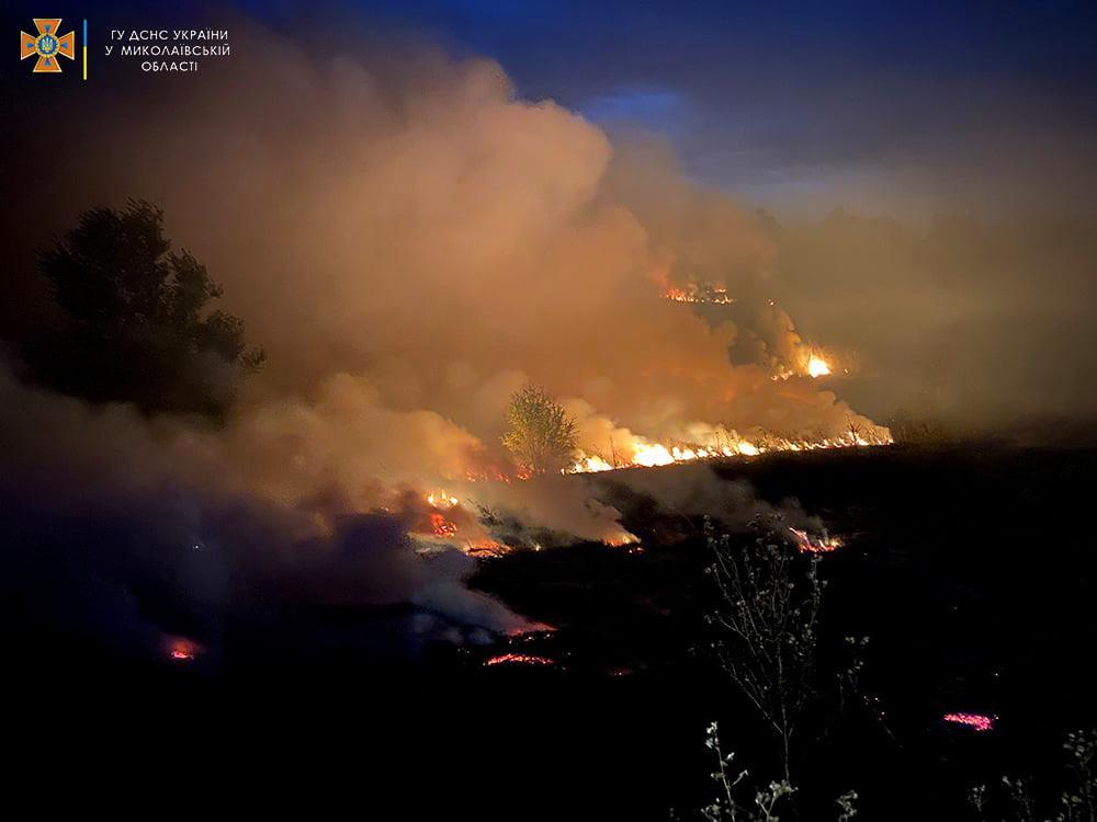 Опять поджоги. За сутки на Николаевщине горело свыше 2 га лесов и 32,5 га открытых территорий (ФОТО) 3