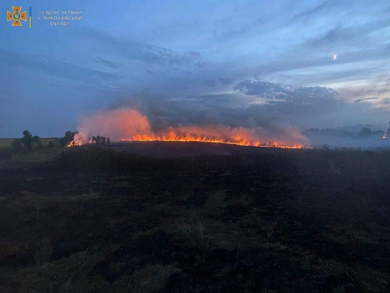 Опять поджоги. За сутки на Николаевщине горело свыше 2 га лесов и 32,5 га открытых территорий (ФОТО)