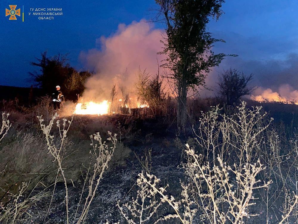 Опять поджоги. За сутки на Николаевщине горело свыше 2 га лесов и 32,5 га открытых территорий (ФОТО) 9