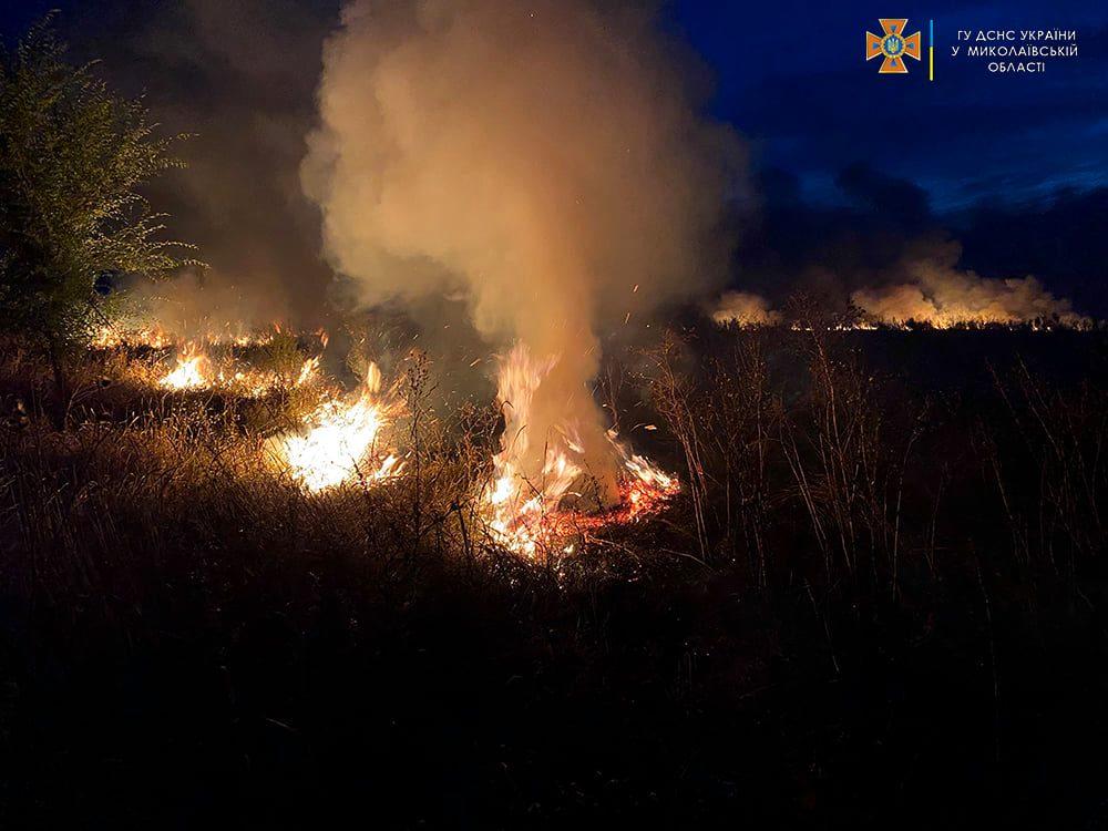 Опять поджоги. За сутки на Николаевщине горело свыше 2 га лесов и 32,5 га открытых территорий (ФОТО) 11