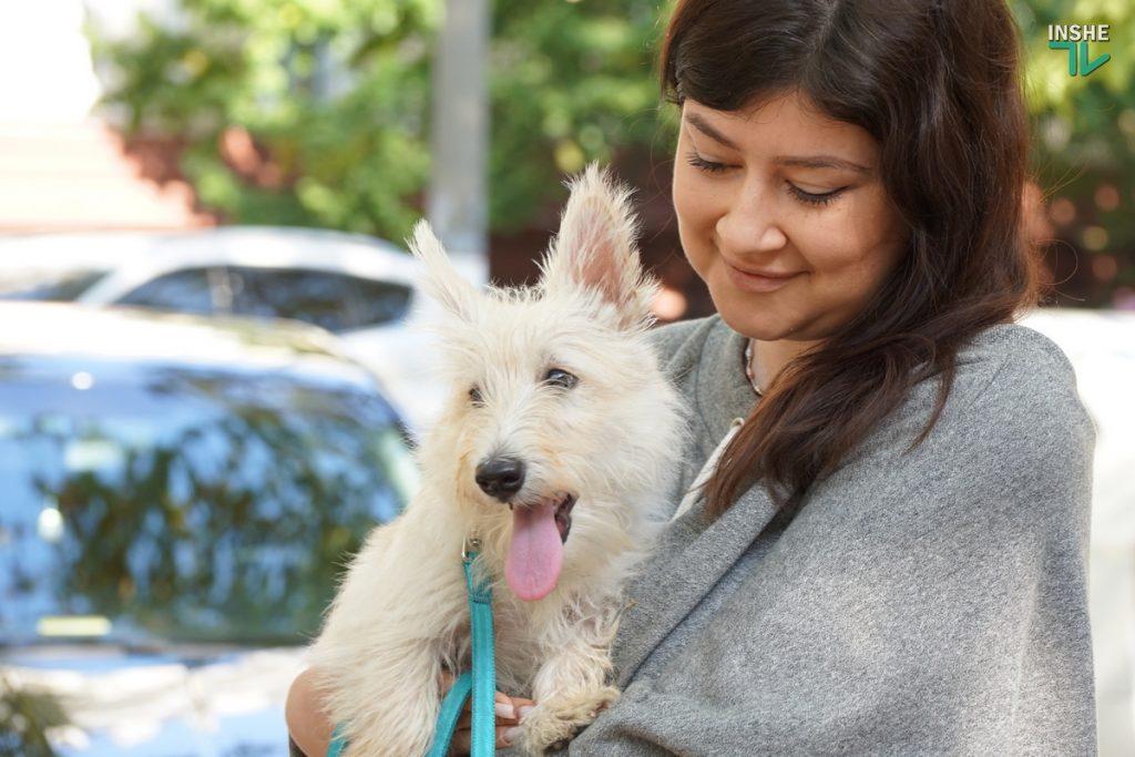 В Николаеве требовали справедливого наказания для застрелившего собаку на рынке «Юлиана» (ФОТО, ВИДЕО) 11