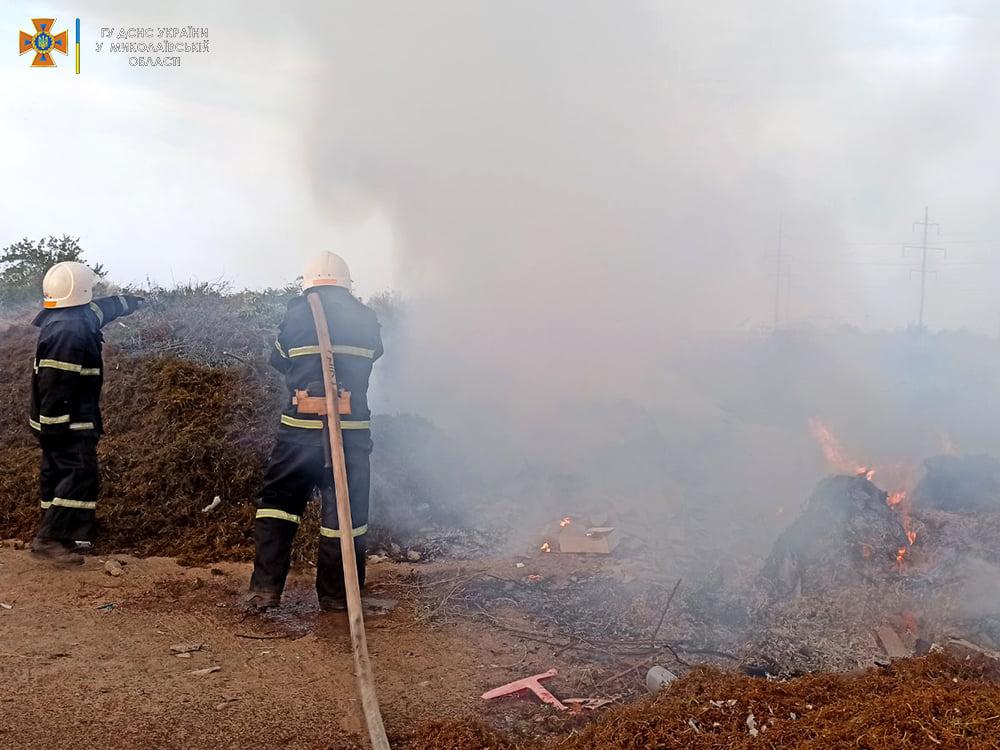 Опять поджоги. За сутки на Николаевщине горело свыше 2 га лесов и 32,5 га открытых территорий (ФОТО) 13