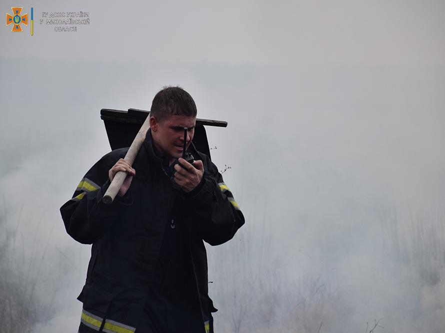 Возле Мешково-Погорелово выгорело почти 5 га (ФОТО) 9