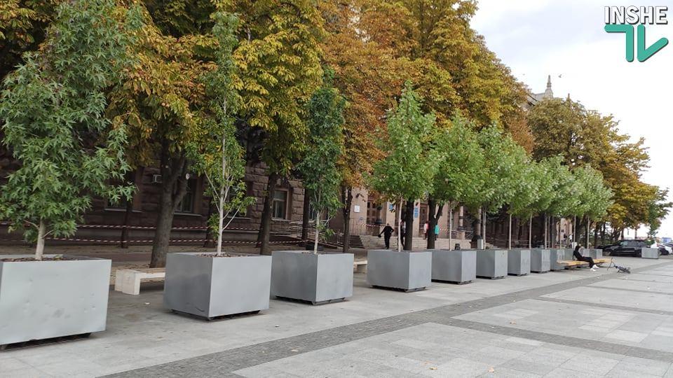 Депутаты решили посчитать деревья в кадках на Соборной площади и выяснить, во сколько они обошлись бюджету Николаева 1