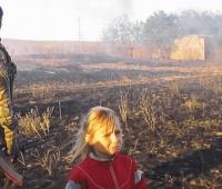 Госкино не разрешил прокат фильма, снятого на телефоны украинских военных (ВИДЕО)