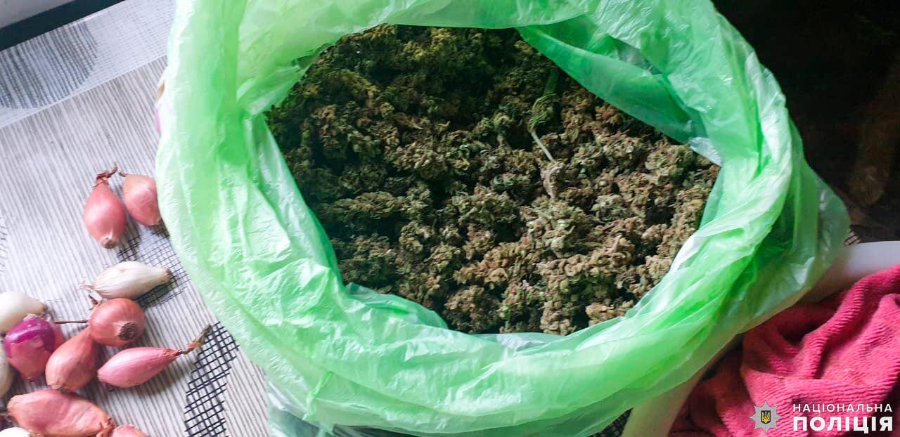 У двух жителей Вознесенска полицейские Николаевщины изъяли около 20 кг подготовленной к употреблению конопли (ФОТО, ВИДЕО) 13