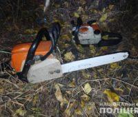 На Николаевщине задержали черных лесорубов — пилили дубы (ФОТО)