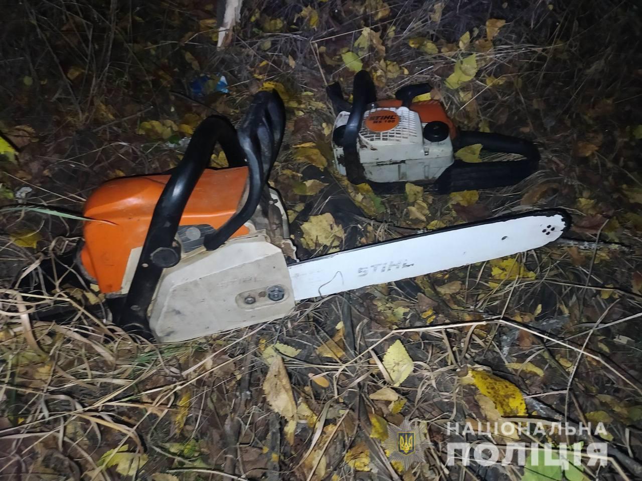 На Николаевщине задержали черных лесорубов - пилили дубы (ФОТО) 19