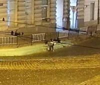 Во Львове полиция ищет неизвестную женщину, которая ночью покрасила бордюры в зеленый цвет (ВИДЕО)